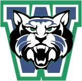 Weddington Wildcats