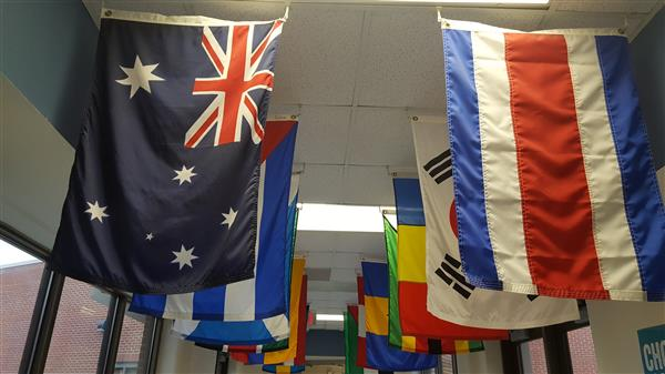 Country Flags in the hallways