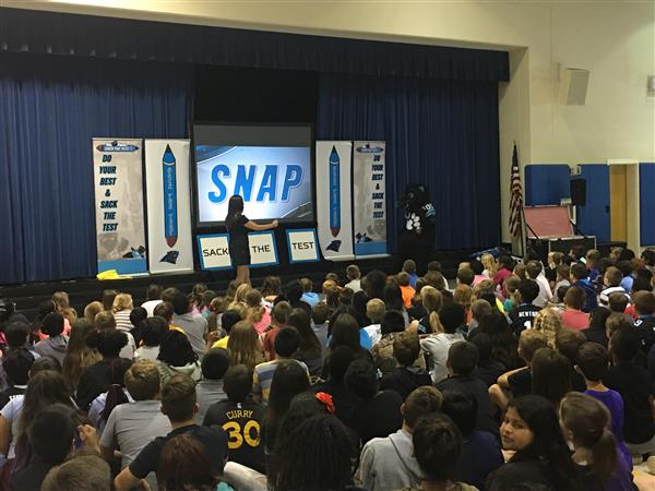 Sir Purr Snaps Students with Testing Tips