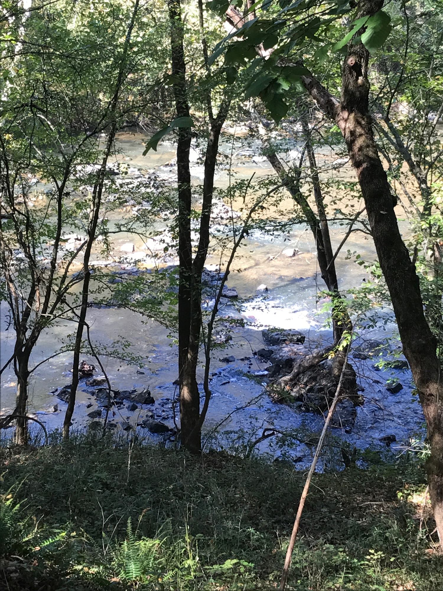 Picture of stream