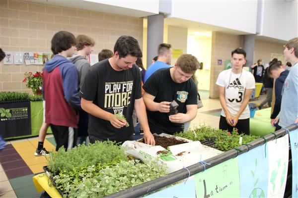 Students select plants to pot and take home.