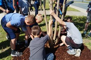 Beta Club Plants Trees with Union Power