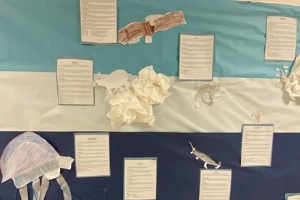 Student projects displayed in hallway