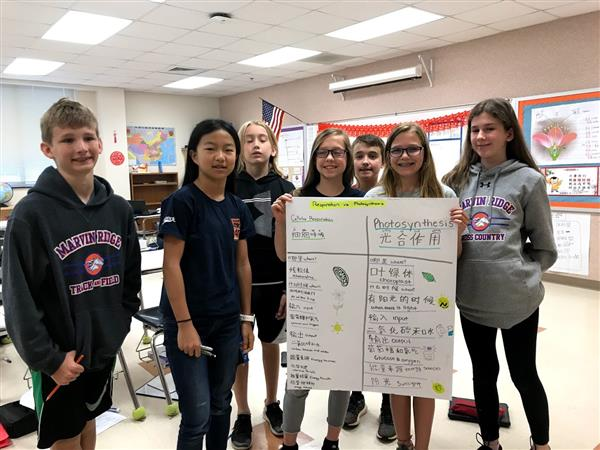 Mandarin Dual Language Immersion students continue to learn and thrive at Marvin Ridge Middle