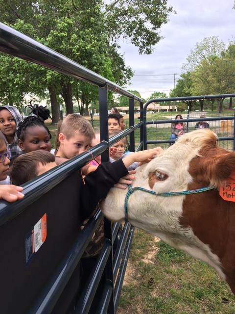 Third Graders Experience AG Day!