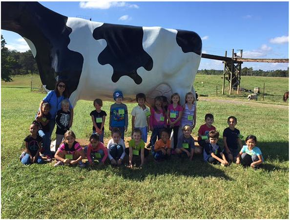 students in front of cow